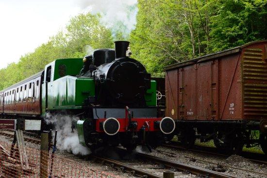 Train leaving Bitton Station